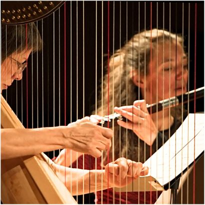 Bernaola Trio Salzedo 12