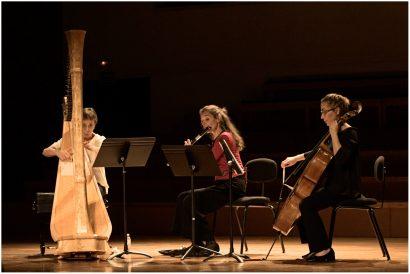 Bernaola Trio Salzedo 14
